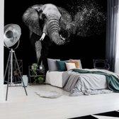 Fotobehang Black And White Elephant | V8 - 368cm x 254cm | 130gr/m2 Vlies