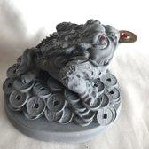 Feng Shui kikker met munt grijs 11.8x10x9cm