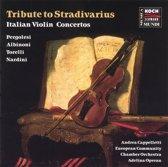 Tribute to Stradivarius
