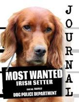Most Wanted Irish Setter Journal