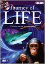 Journey Of Life - Evolutie Van Het Leven Op Aarde