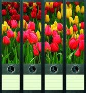 Rugetiket Tulips