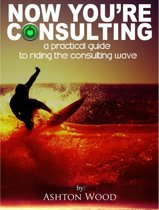 Now You're Consulting: in 2013