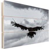 Zwart-wit foto van een vliegende oorgier Vurenhout met planken 30x20 cm - klein - Foto print op Hout (Wanddecoratie)