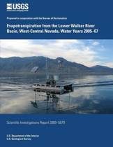 Evapotranspiration from the Lower Walker River Basin, West-Central Nevada, Water Years 2005-07