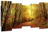 Canvas schilderij Natuur   Geel, Groen, Bruin   150x80cm 5Luik