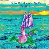 Echo of Horse's Soul's Footprint