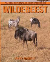 Wildebeest! an Educational Children's Book about Wildebeest with Fun Facts & Photos