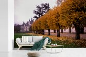 Fotobehang vinyl - Gele bladeren in de herfst bij het Kasteel van Chenonceau breedte 390 cm x hoogte 260 cm - Foto print op behang (in 7 formaten beschikbaar)