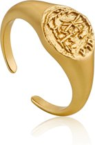Ania Haie Ring AH R009-03G - Zilver Goldplated