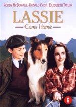 Lassie Come Home (dvd)