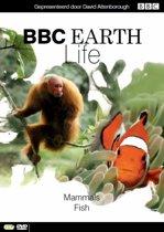 BBC Earth - Life: Deel 7
