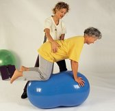 Gymnic Physio Roll 55 - Pindabal - Geel - Ø 55 cm