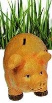 spaarvarken - tirelire cochon argent de poche - zakgeld