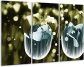 Glasschilderij Tulp | Blauw, Grijs | 120x80cm 3Luik | Foto print op Glas |  F005147