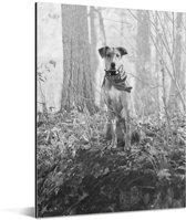 Zwart wit foto van een Amerikaanse buldog in het bos Aluminium 120x160 cm - Foto print op Aluminium (metaal wanddecoratie) XXL / Groot formaat!