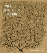 The Beautiful Brain