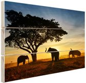 Silhouet Thaise olifant zonsopgang Hout 80x60 cm - Foto print op Hout (Wanddecoratie)