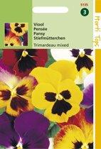 2 stuks Hortitops Viola Wittrockiana Trimardeau Gemengd