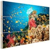 Koraal met vissen Hout 60x40 cm - Foto print op Hout (Wanddecoratie)