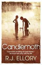 Candlemoth