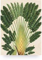 Print op hout Botanical Palm, M
