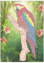 Sparkles Set XL Parrot