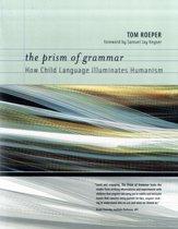 The Prism of Grammar