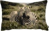 Kussen Fluweel Zebra 40x60cm