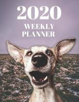 2020 Weekly Planner - Funny Greyhound: Daily Agenda For Week, Day, Month & Year Plans - Organizer for Dog or Pet Owner: Gift Appointment Book - Funny