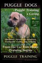 Puggle Dogs, Puggle Training & Caring By D!G THIS DOG TRAINING Obedience - Socializing - Behaviors - Commands - Caring - Dog Training