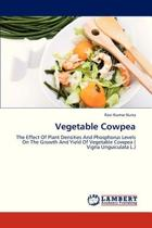 Vegetable Cowpea