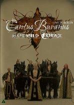 Corvus Corax - Cantus Buranus Live In Berlin