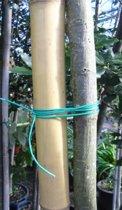 50Mtr. Bindtouw - perfect voor het geleiden van uw planten!