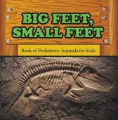 Big Feet, Small Feet : Book of Prehistoric Animals for Kids