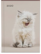 Katten Desk Agenda 2020