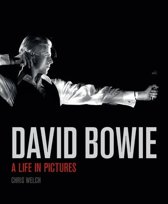 David Bowie, Life in Pictures