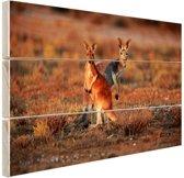 Kangoeroes zonsopgang Hout 30x20 cm - klein - Foto print op Hout (Wanddecoratie)