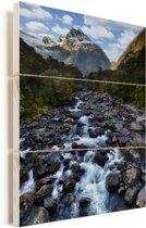 Donne River in Nationaal park Fiordland op South-Island Vurenhout met planken 20x30 cm - klein - Foto print op Hout (Wanddecoratie)