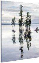 Lake Brunner Nieuw-Zeeland Aluminium 40x60 cm - Foto print op Aluminium (metaal wanddecoratie)