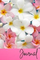 Journal: Plumeria Flower Pink Journal Lined Blank Paper Diary