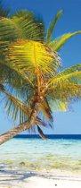 Palmenstrand  - Fotobehang 91 x 211 cm