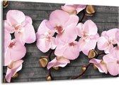 Schilderij   Canvas Schilderij Orchidee, Bloemen   Grijs, Roze   140x90cm 1Luik   Foto print op Canvas
