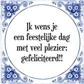 Tegeltje met Spreuk (Tegeltjeswijsheid): Ik wens je een feestelijke dag met veel plezier; gefeliciteerd!! + Kado verpakking & Plakhanger