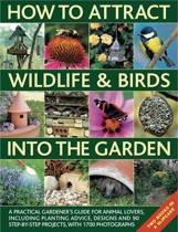 How to Attract Wildlife & Birds into the Garden