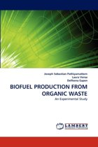 Biofuel Production from Organic Waste