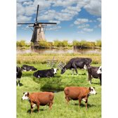 Tafelzeil Holland Molens