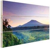 Indonesie Bali rijstvelden en vulkanen Hout 80x60 cm - Foto print op Hout (Wanddecoratie)