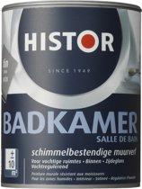 Histor Badkamer Muurverf 1 liter Tin