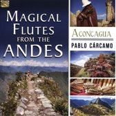 Magical Flutes From The Andes. Aconcagua